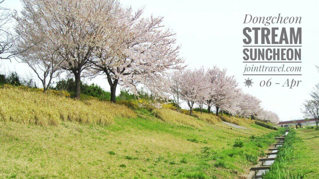 Dongcheon Stream Suncheon