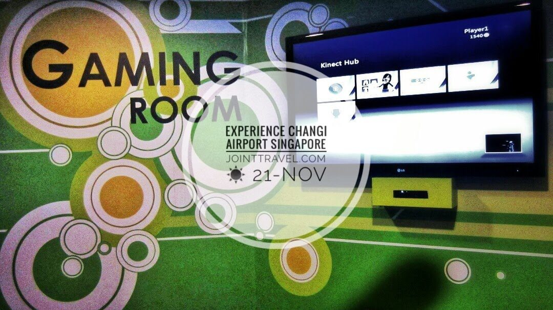 Changi Airport Experience