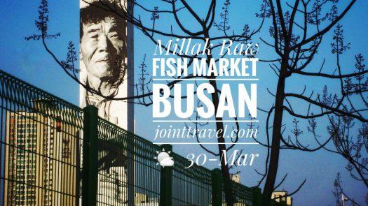 Millak Raw Fish Market