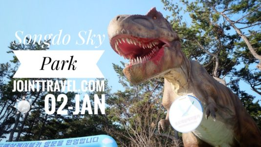 Songdo Sky Park