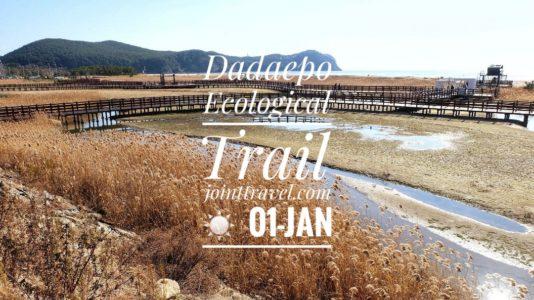 Dadaepo Ecological Trail