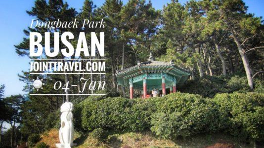Dongbaek Park