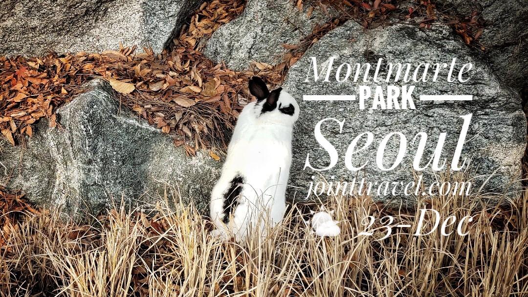 Montmartre Park