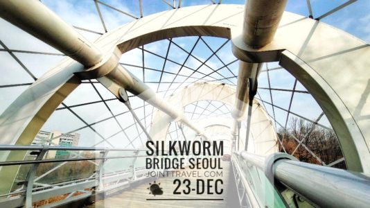 Silkworm Bridge