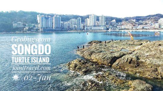 Songdo Turtle Island