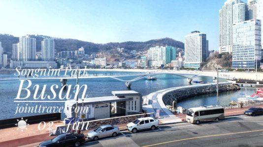 Songnim Park